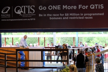 Magic Millions March Yearling Sale