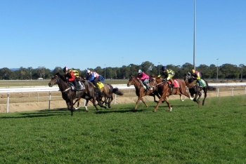 Rocklord wins Deagon trial (1 July 2014)