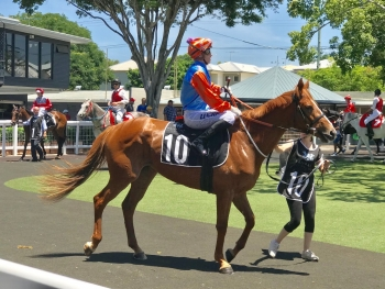Our Esposito at Doomben (20th December)